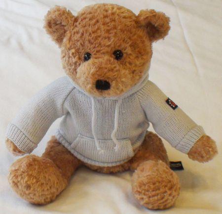 Teddy bear hoodie